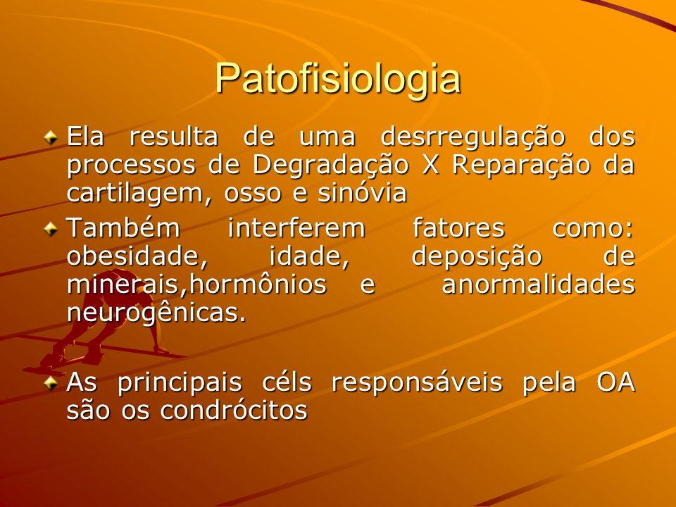 Patofisiologia Ela resulta de uma desrregulação dos processos de Degradação X Reparação da cartilagem, osso e sinóvia.