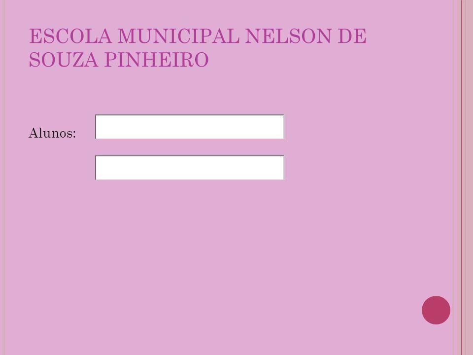 ESCOLA MUNICIPAL NELSON DE SOUZA PINHEIRO