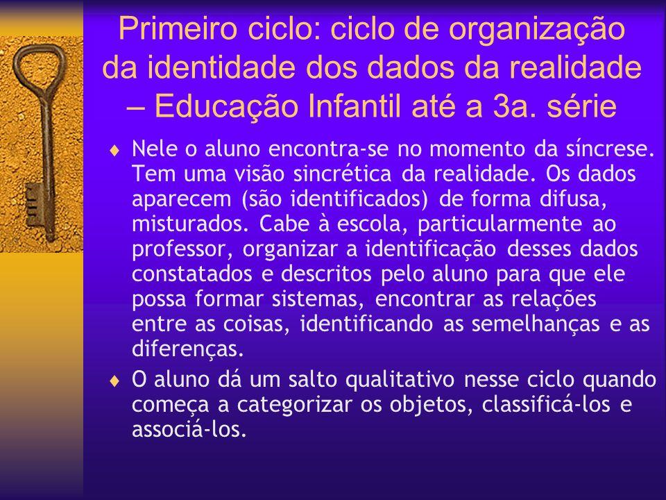 Primeiro ciclo: ciclo de organização da identidade dos dados da realidade – Educação Infantil até a 3a. série