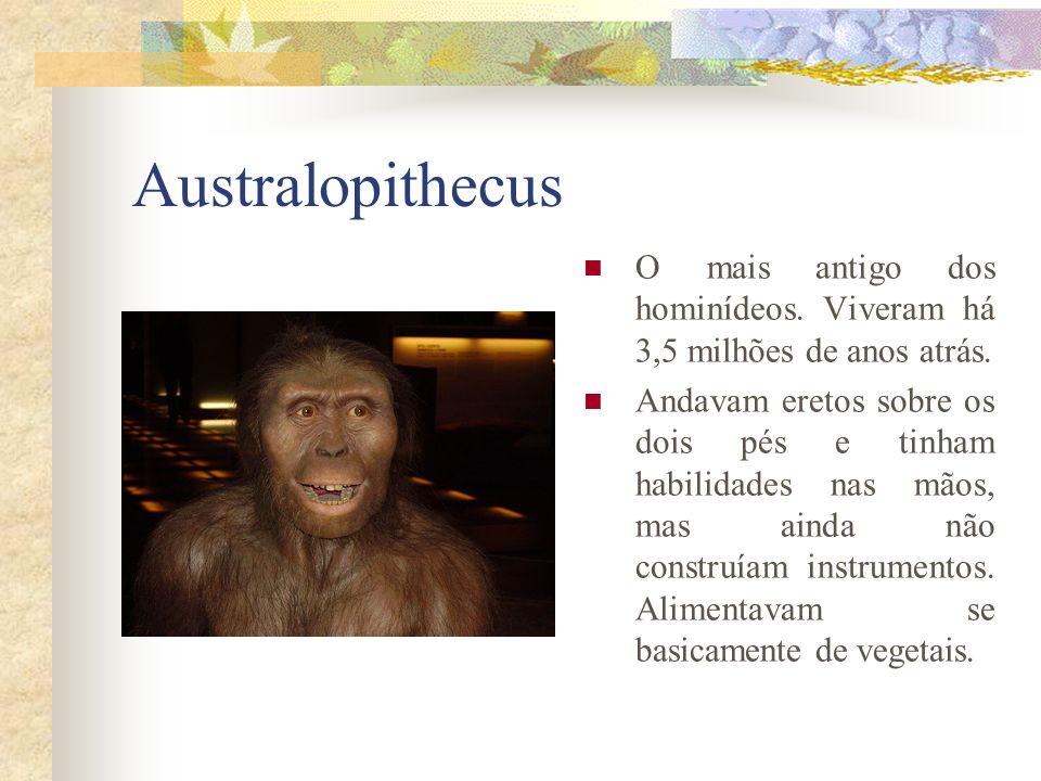 Australopithecus O mais antigo dos hominídeos. Viveram há 3,5 milhões de anos atrás.