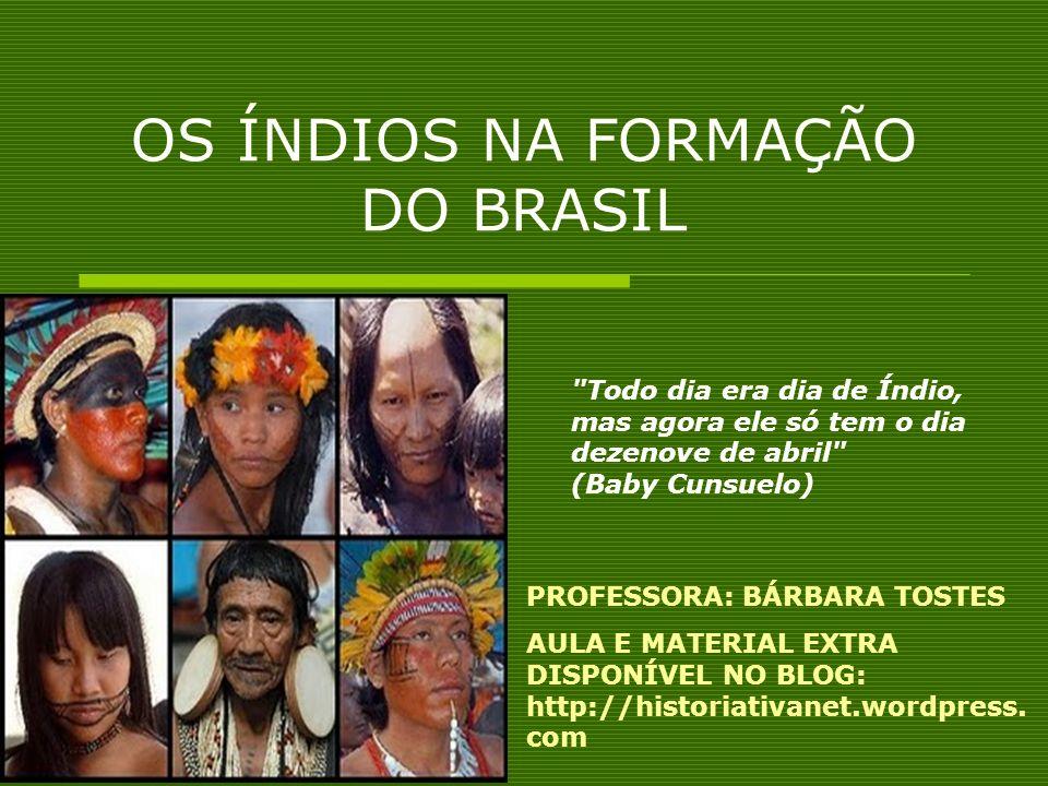OS ÍNDIOS NA FORMAÇÃO DO BRASIL