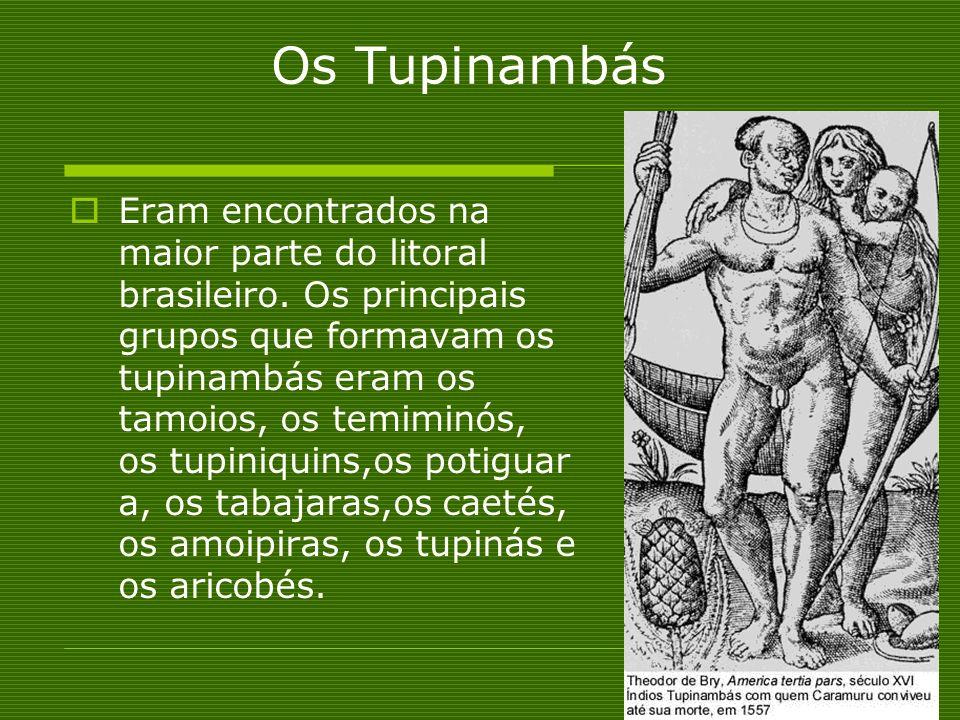 Os Tupinambás