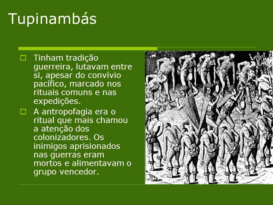 Tupinambás Tinham tradição guerreira, lutavam entre si, apesar do convívio pacífico, marcado nos rituais comuns e nas expedições.
