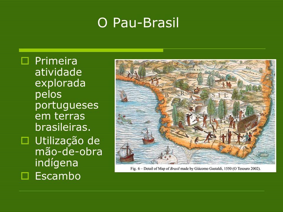 O Pau-Brasil Primeira atividade explorada pelos portugueses em terras brasileiras. Utilização de mão-de-obra indígena.