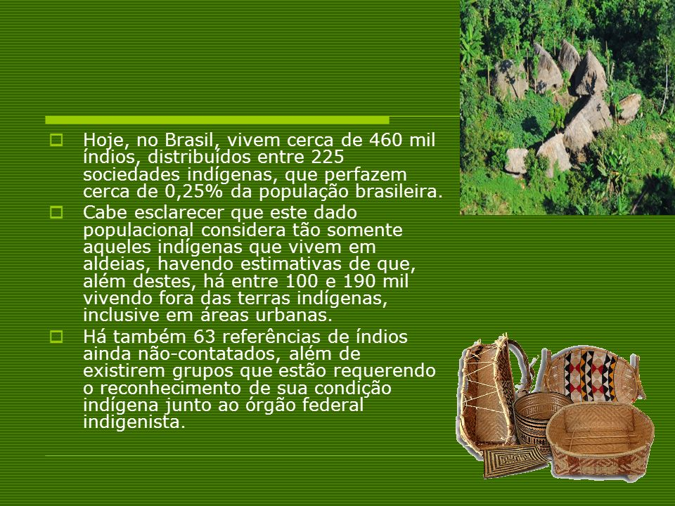Hoje, no Brasil, vivem cerca de 460 mil índios, distribuídos entre 225 sociedades indígenas, que perfazem cerca de 0,25% da população brasileira.