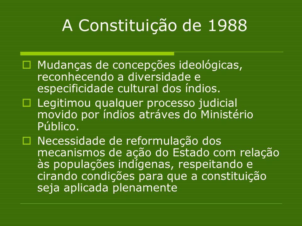 A Constituição de 1988 Mudanças de concepções ideológicas, reconhecendo a diversidade e especificidade cultural dos índios.