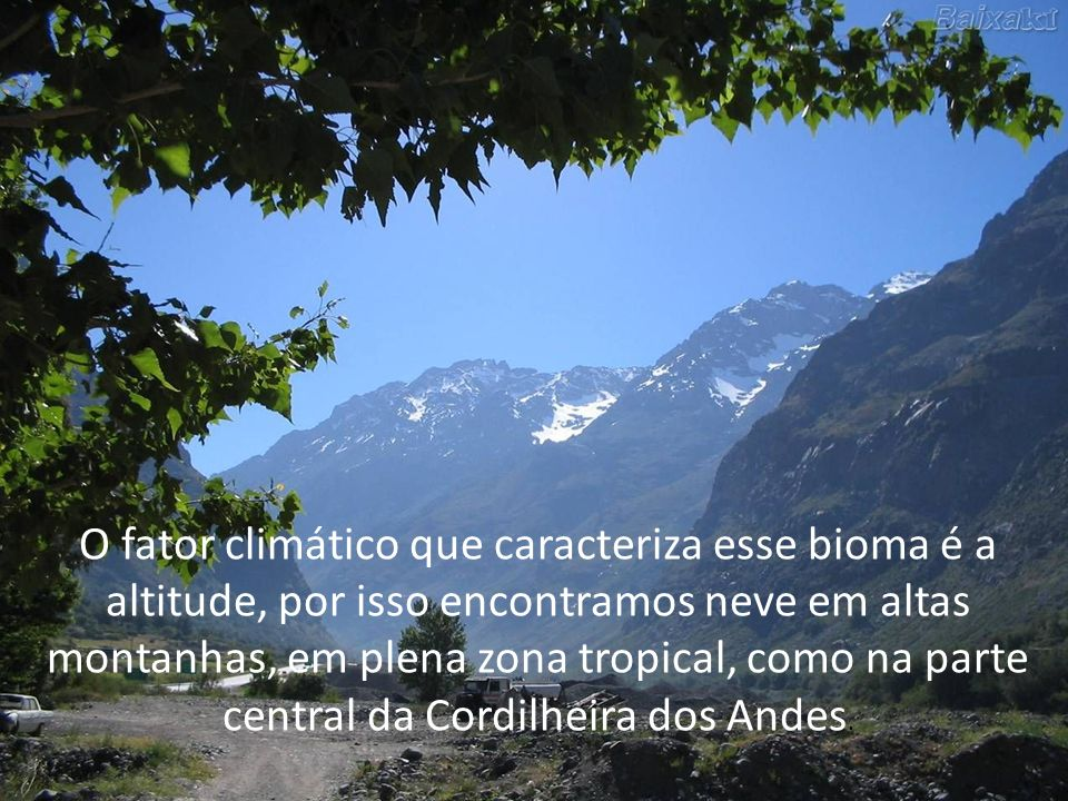 O fator climático que caracteriza esse bioma é a altitude, por isso encontramos neve em altas montanhas, em plena zona tropical, como na parte central da Cordilheira dos Andes.