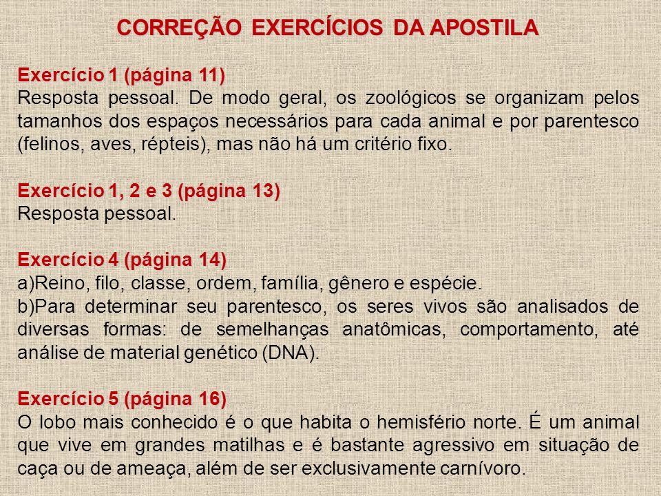 CORREÇÃO EXERCÍCIOS DA APOSTILA