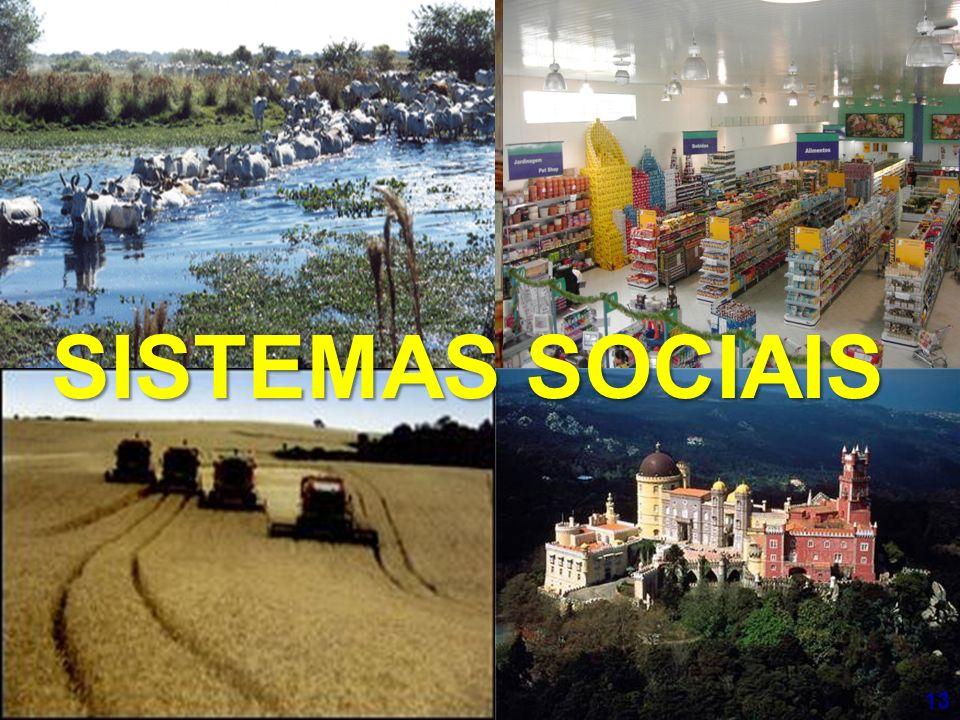 SISTEMAS SOCIAIS 13