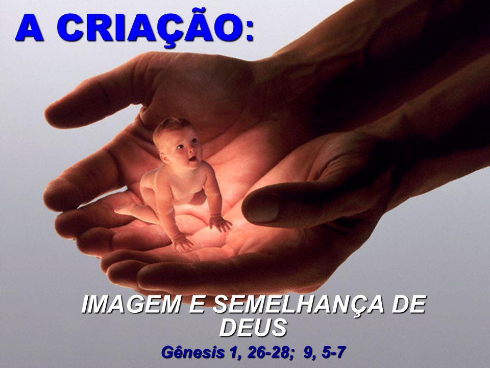 IMAGEM E SEMELHANÇA DE DEUS Gênesis 1, 26-28; 9, 5-7