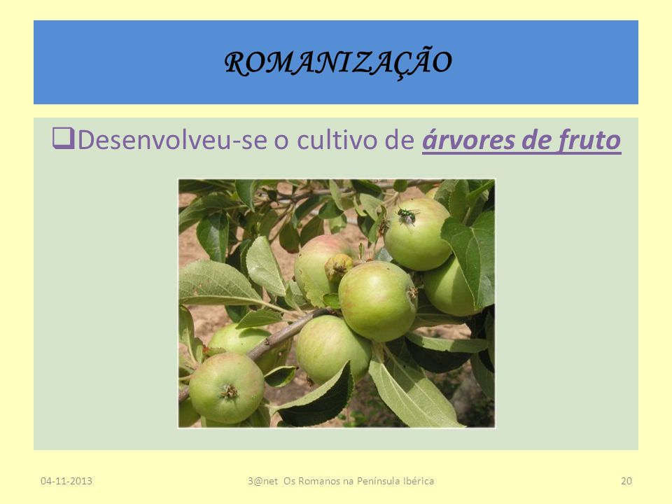 ROMANIZAÇÃO Desenvolveu-se o cultivo de árvores de fruto 23-03-2017