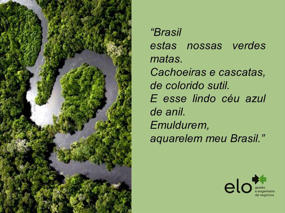 estas nossas verdes matas. Cachoeiras e cascatas, de colorido sutil.