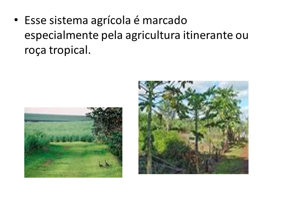 Esse sistema agrícola é marcado especialmente pela agricultura itinerante ou roça tropical.