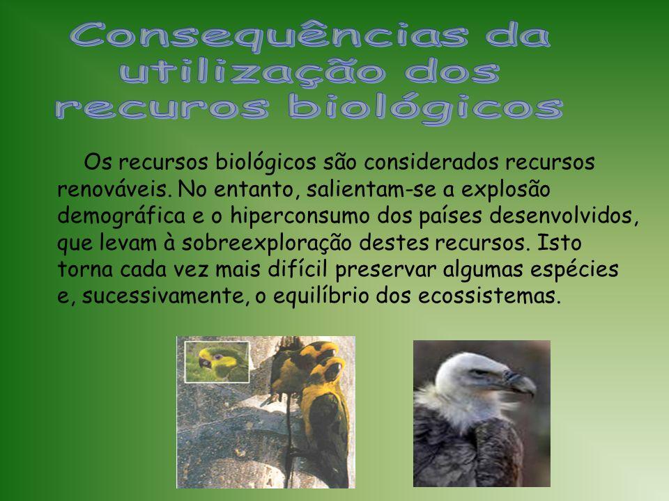 Consequências da utilização dos recuros biológicos