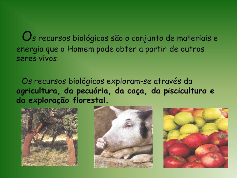 Os recursos biológicos são o conjunto de materiais e energia que o Homem pode obter a partir de outros seres vivos.