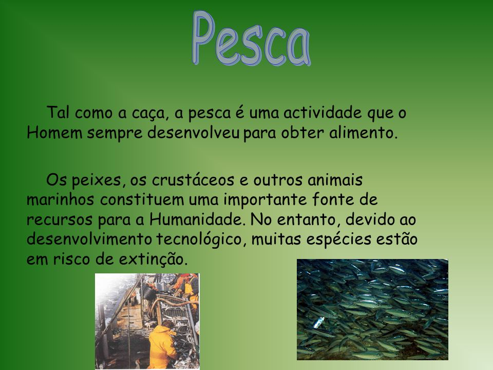 Pesca Tal como a caça, a pesca é uma actividade que o Homem sempre desenvolveu para obter alimento.