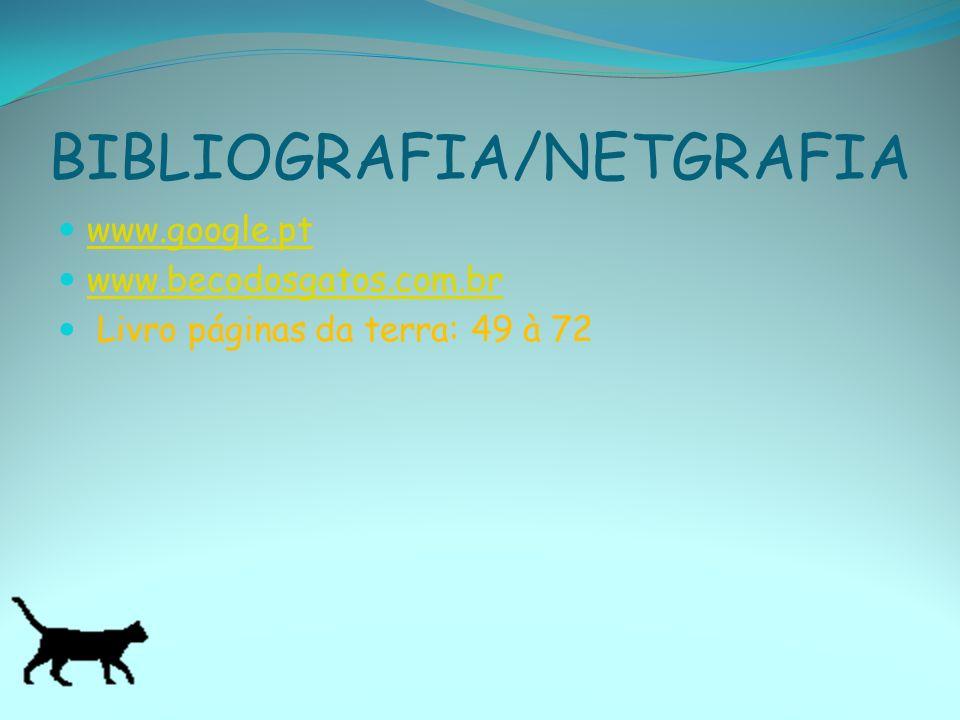 BIBLIOGRAFIA/NETGRAFIA