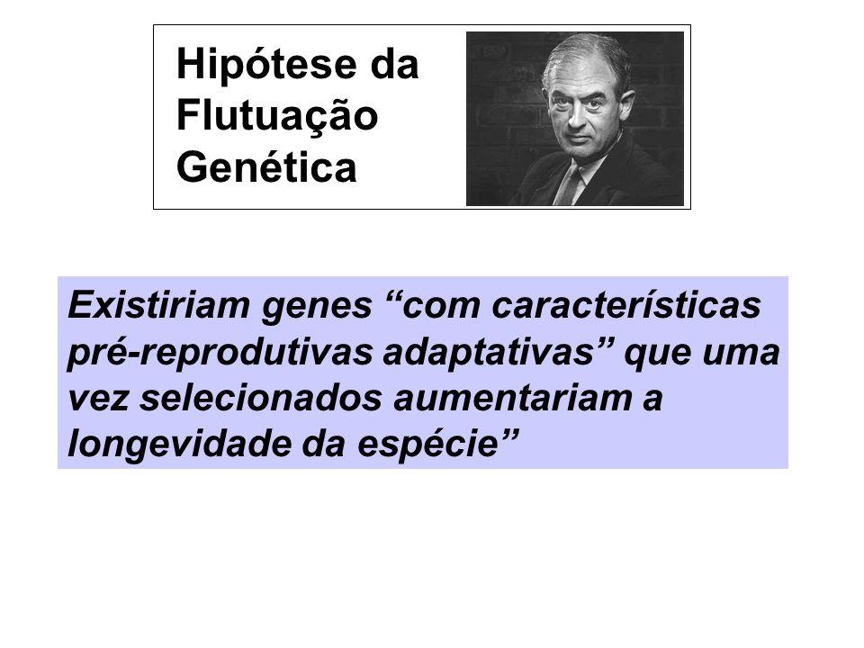 Hipótese da Flutuação Genética Existiriam genes com características