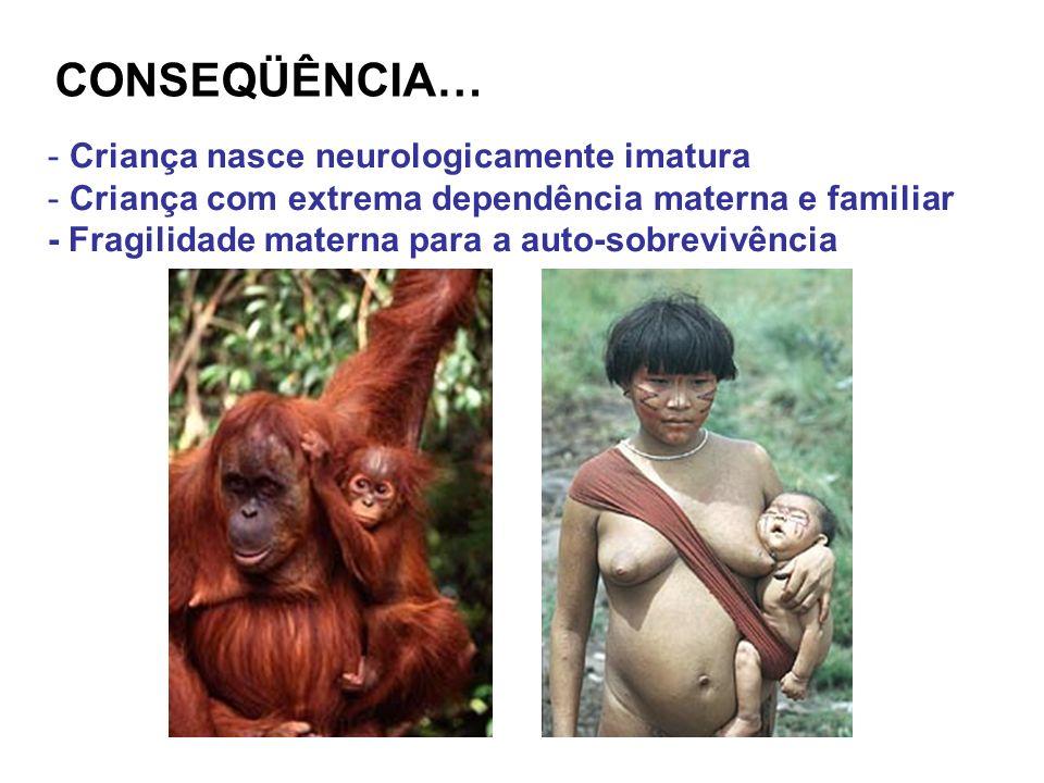 CONSEQÜÊNCIA… Criança nasce neurologicamente imatura