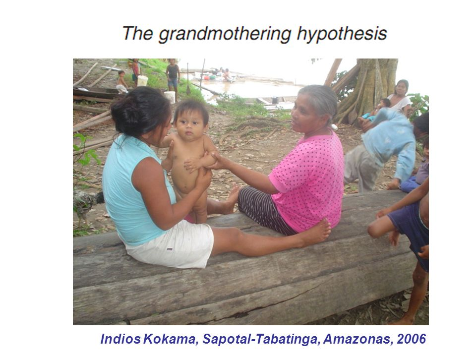 Indios Kokama, Sapotal-Tabatinga, Amazonas, 2006