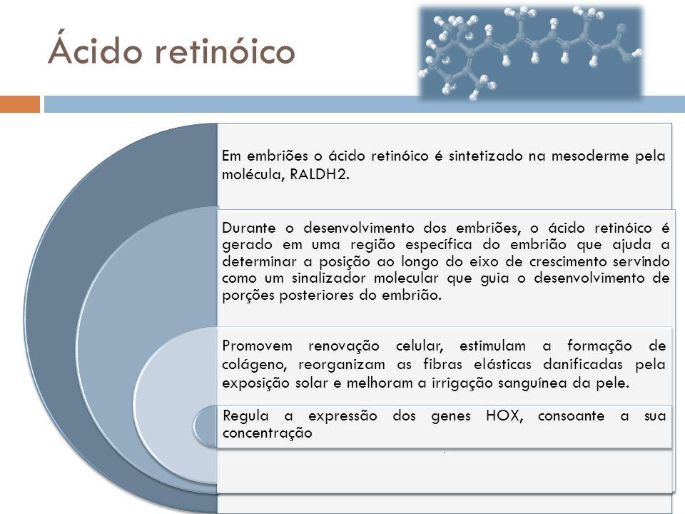 Ácido retinóico Em embriões o ácido retinóico é sintetizado na mesoderme pela molécula, RALDH2.
