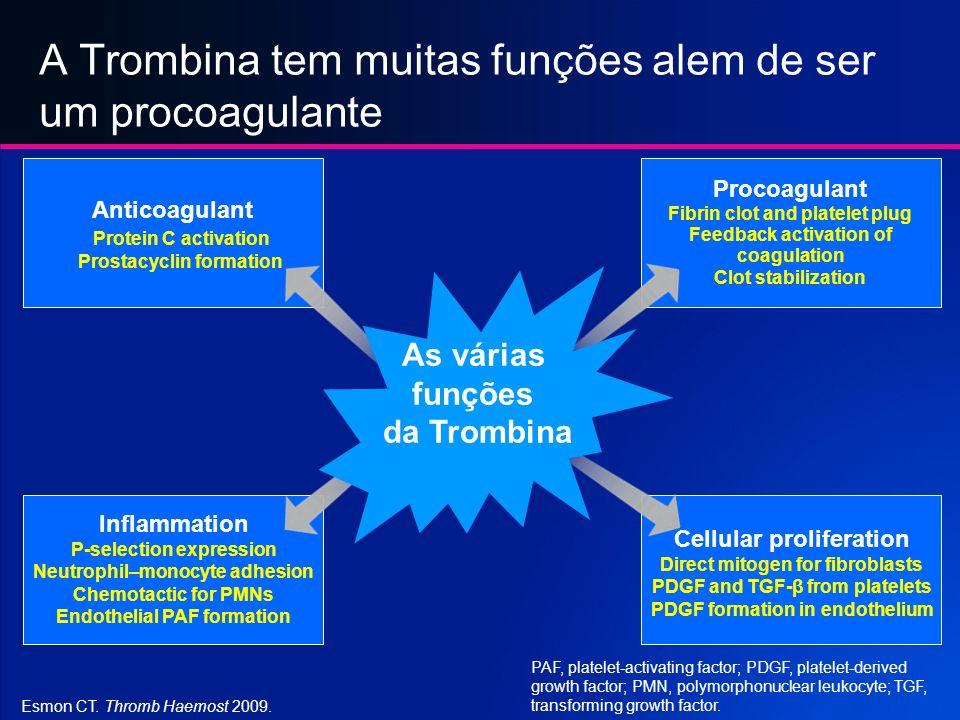 A Trombina tem muitas funções alem de ser um procoagulante