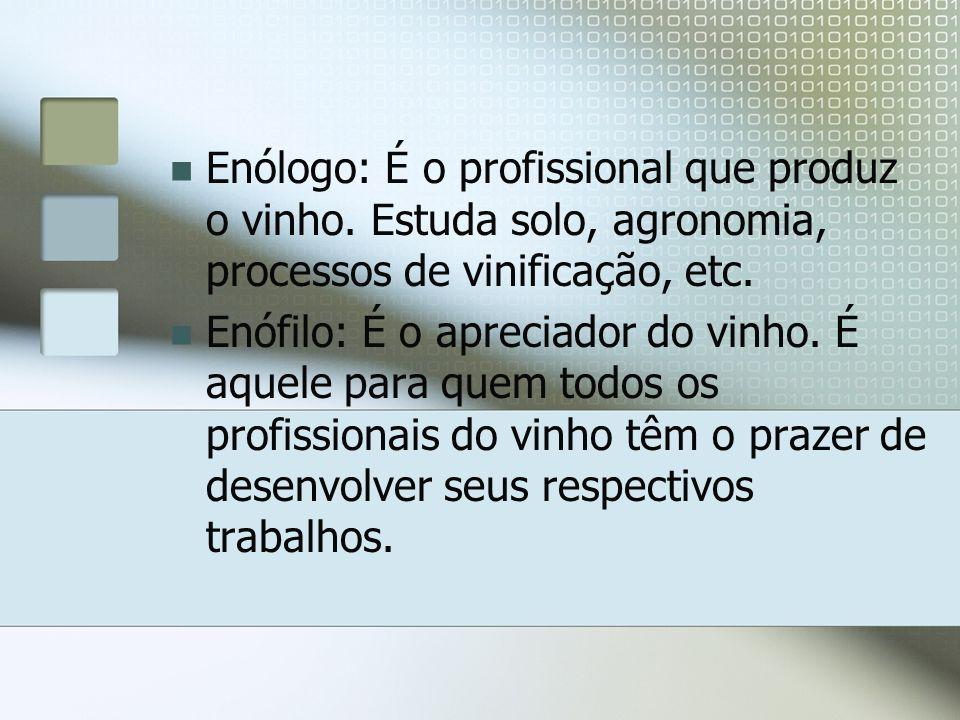 Enólogo: É o profissional que produz o vinho