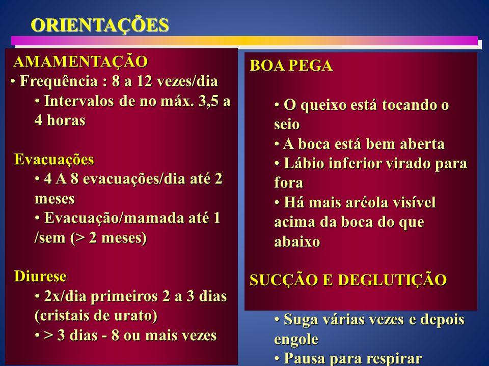 ORIENTAÇÕES AMAMENTAÇÃO BOA PEGA Frequência : 8 a 12 vezes/dia
