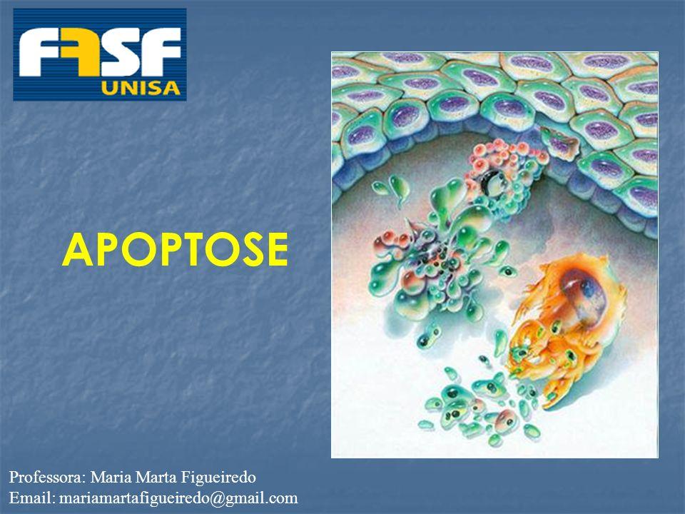 APOPTOSE Professora: Maria Marta Figueiredo