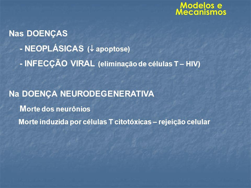 - NEOPLÁSICAS ( apoptose)