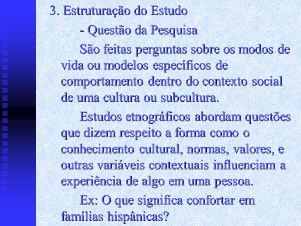 3. Estruturação do Estudo