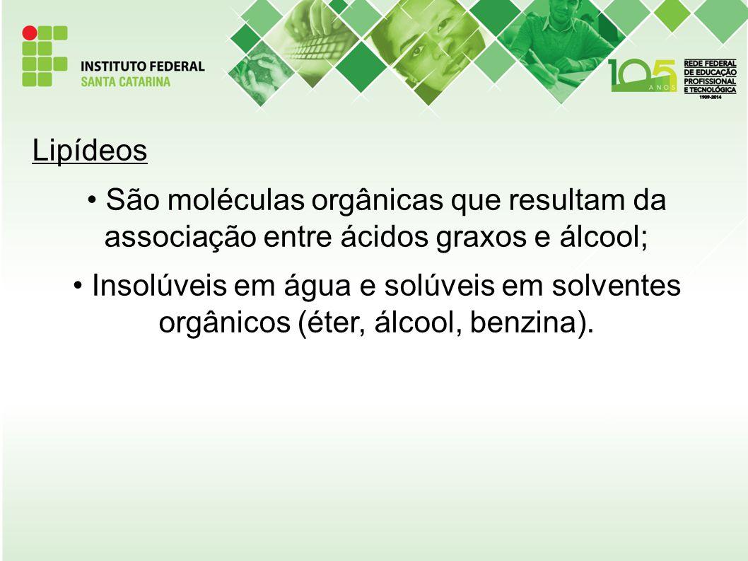 Lipídeos São moléculas orgânicas que resultam da associação entre ácidos graxos e álcool;