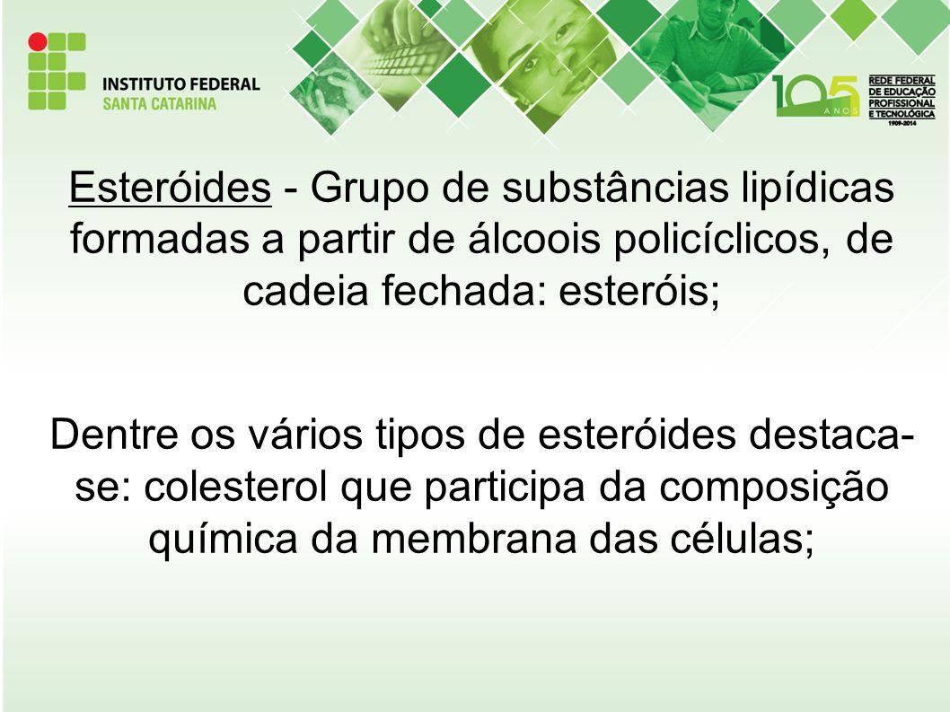 Esteróides - Grupo de substâncias lipídicas formadas a partir de álcoois policíclicos, de cadeia fechada: esteróis; Dentre os vários tipos de esteróides destaca- se: colesterol que participa da composição química da membrana das células;
