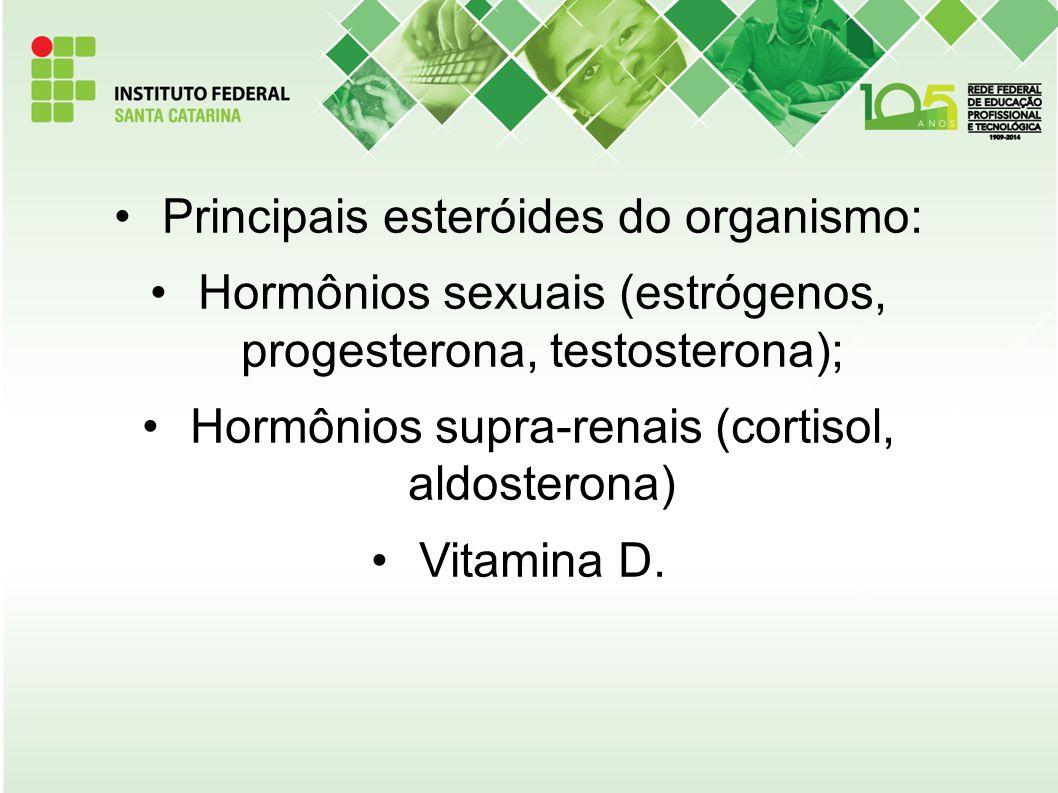 Principais esteróides do organismo: