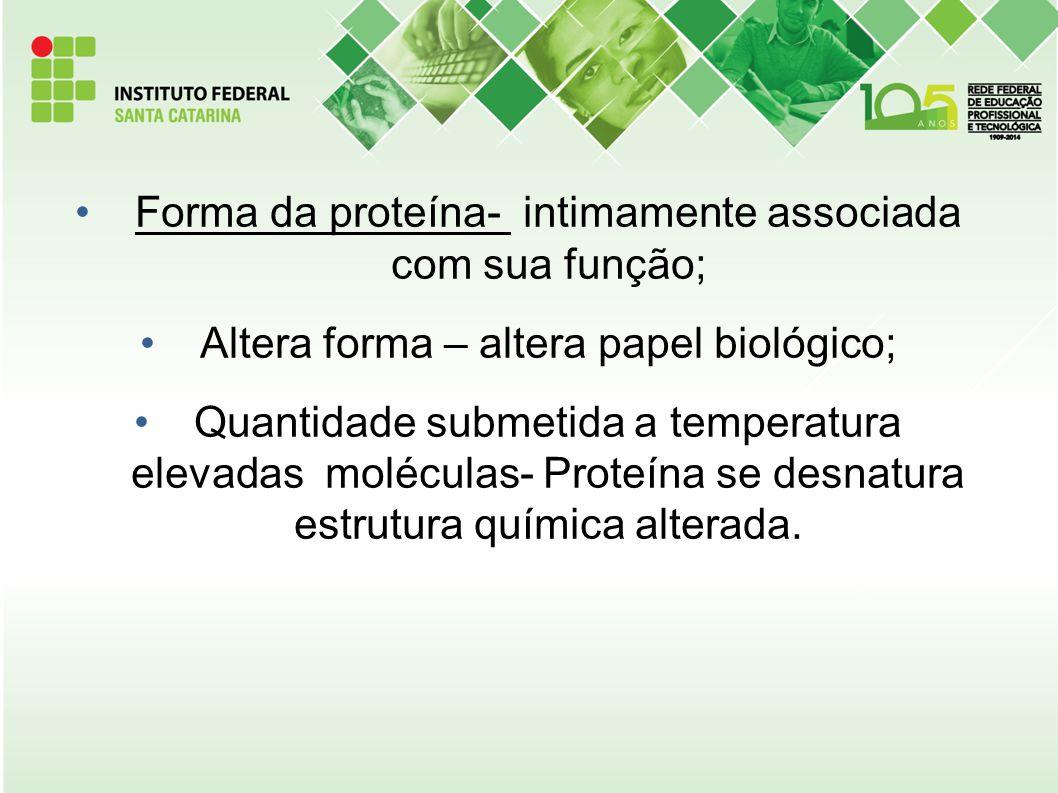 Forma da proteína- intimamente associada com sua função;