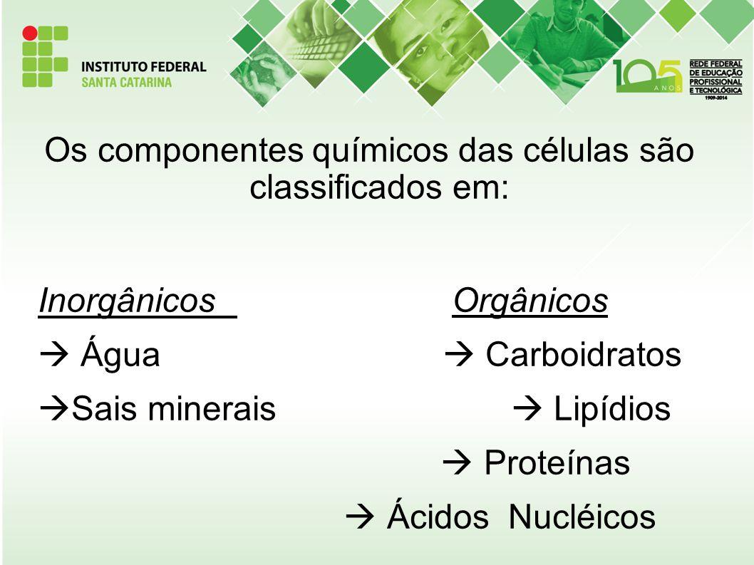 Os componentes químicos das células são classificados em: Inorgânicos Orgânicos  Água  Carboidratos Sais minerais  Lipídios  Proteínas  Ácidos Nucléicos