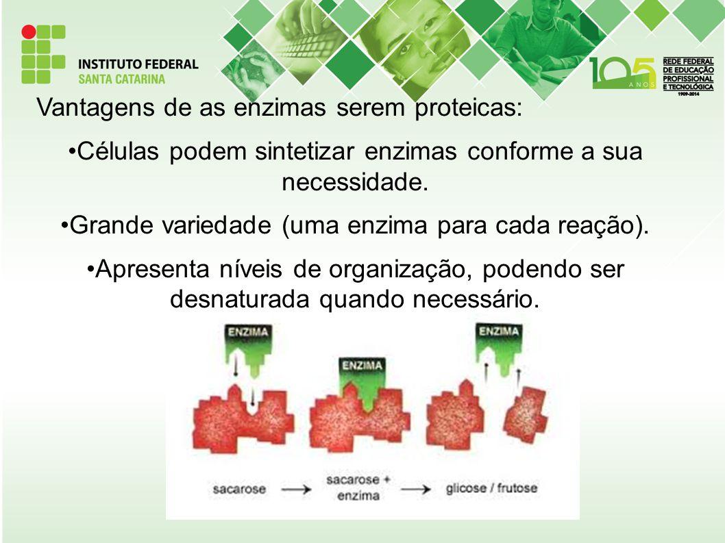 Vantagens de as enzimas serem proteicas: