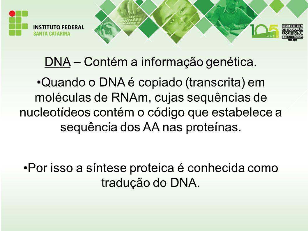 DNA – Contém a informação genética.