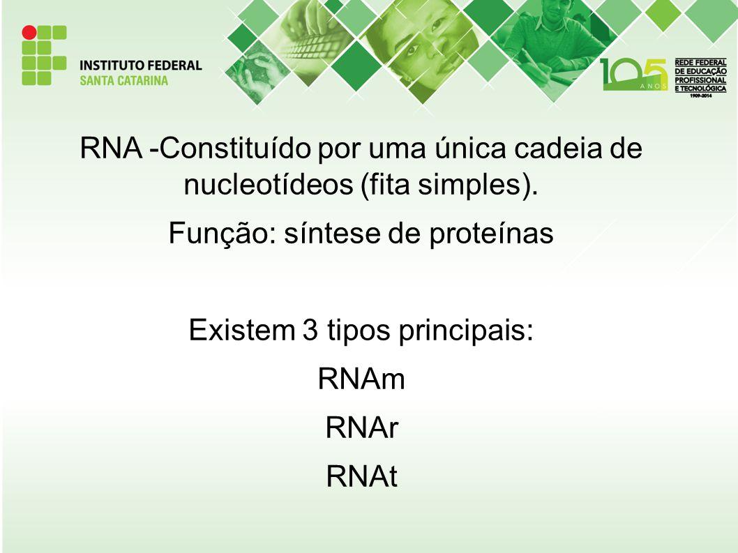 RNA -Constituído por uma única cadeia de nucleotídeos (fita simples)