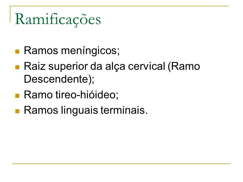 Ramificações Ramos meníngicos;