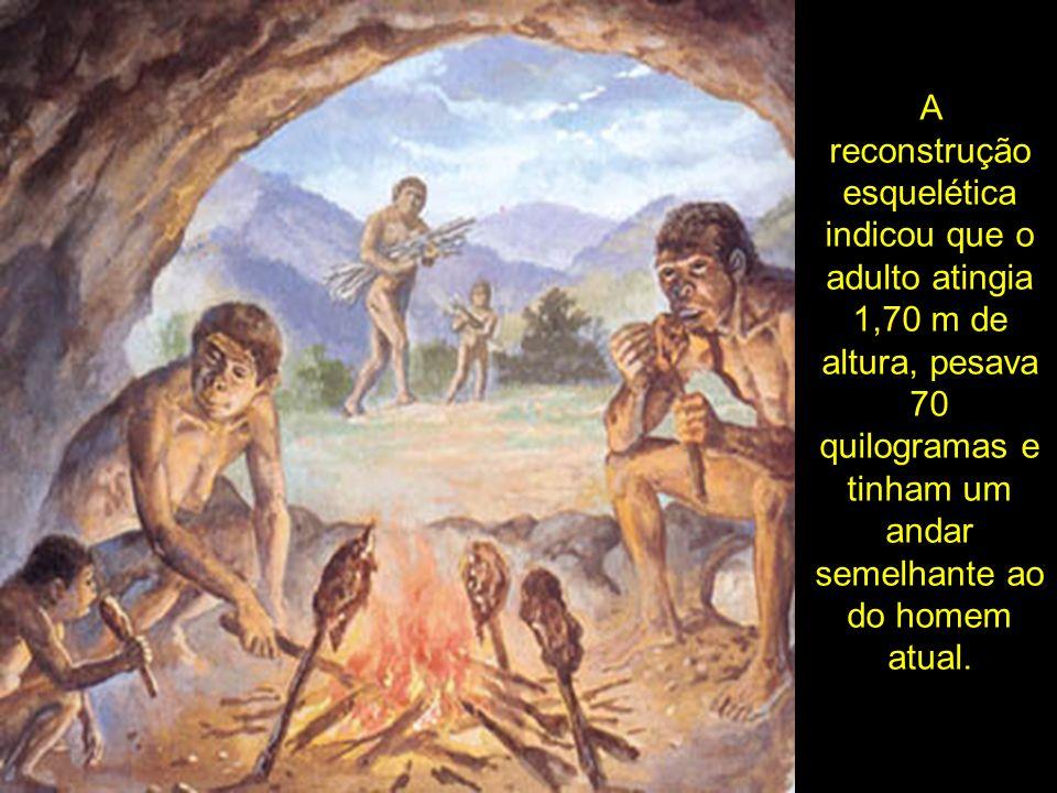 A reconstrução esquelética indicou que o adulto atingia 1,70 m de altura, pesava 70 quilogramas e tinham um andar semelhante ao do homem atual.