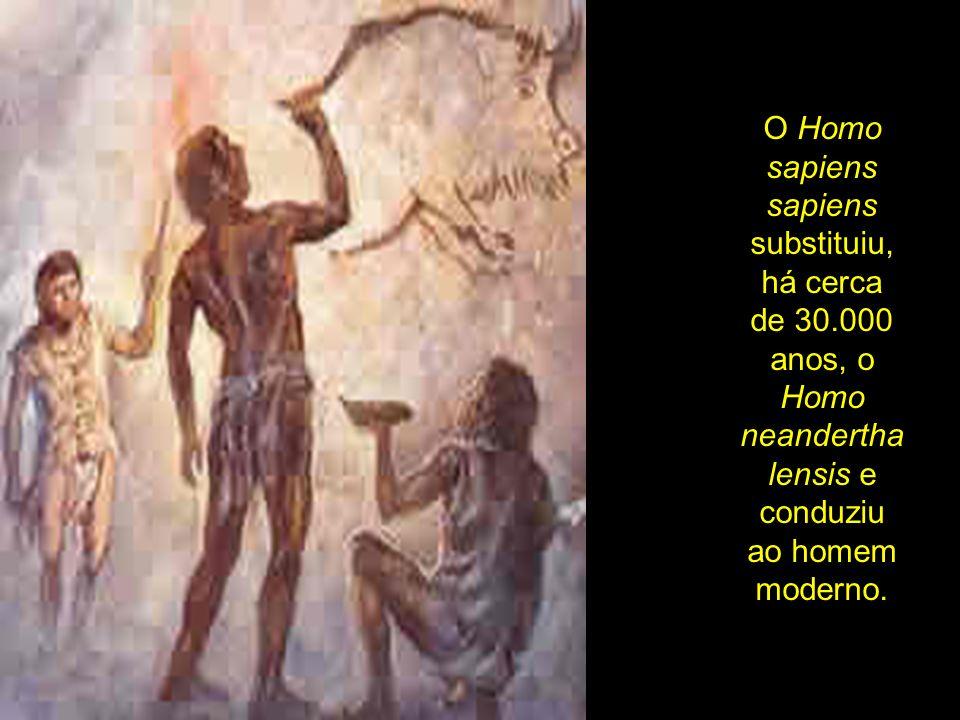 O Homo sapiens sapiens substituiu, há cerca de 30