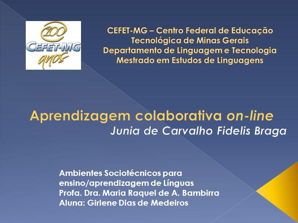 Aprendizagem colaborativa on-line Junia de Carvalho Fidelis Braga