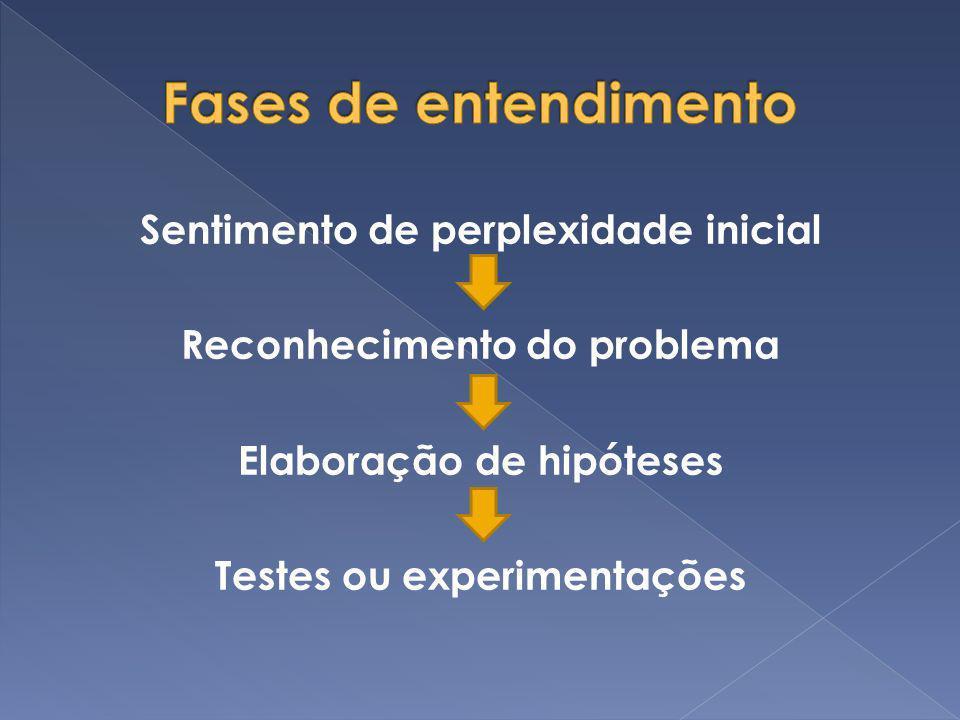 Fases de entendimentoSentimento de perplexidade inicial Reconhecimento do problema Elaboração de hipóteses Testes ou experimentações