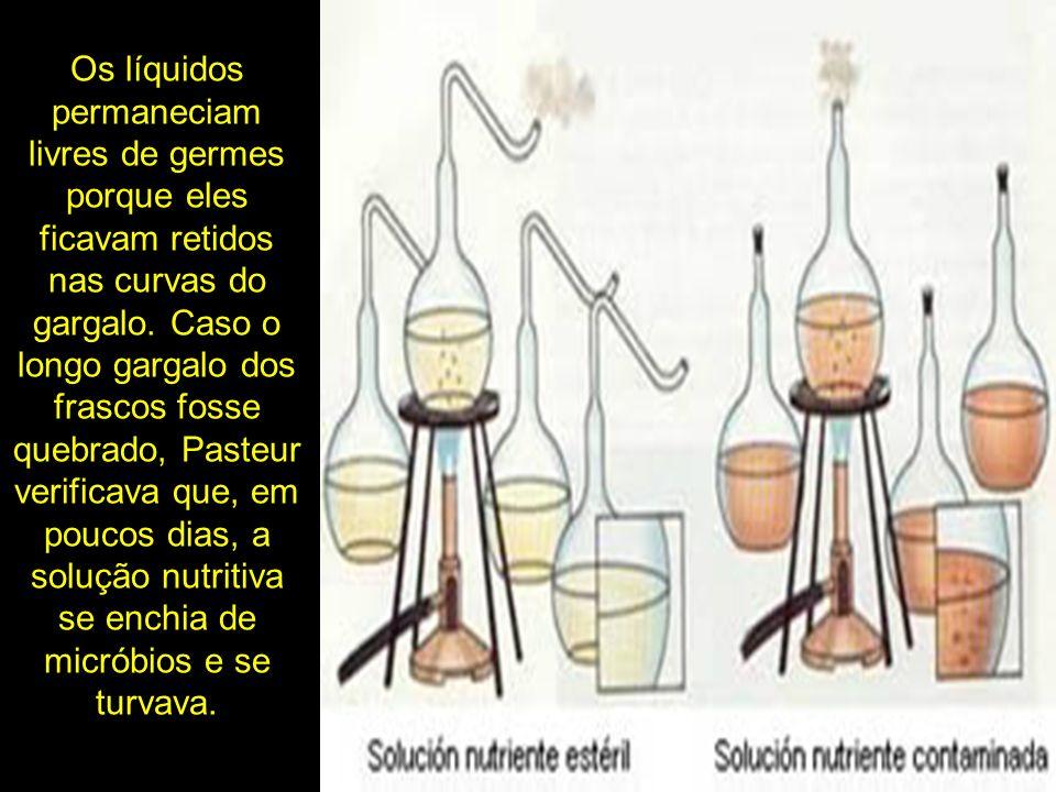 Os líquidos permaneciam livres de germes porque eles ficavam retidos nas curvas do gargalo.