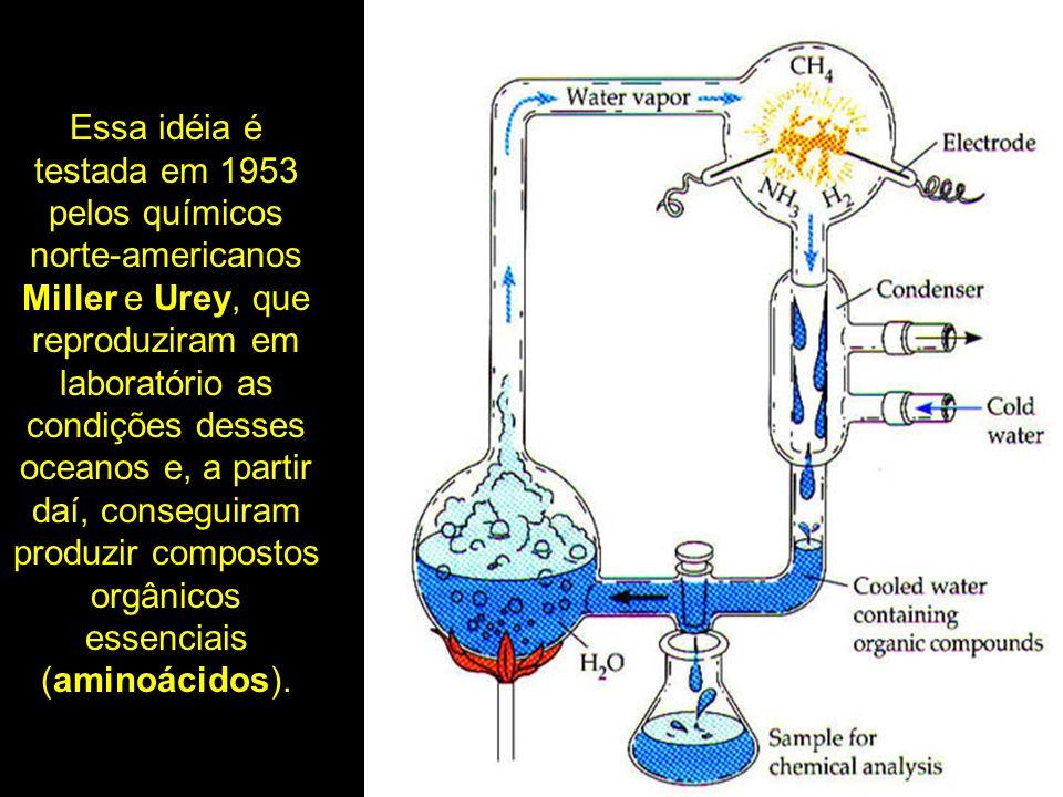 Essa idéia é testada em 1953 pelos químicos norte-americanos Miller e Urey, que reproduziram em laboratório as condições desses oceanos e, a partir daí, conseguiram produzir compostos orgânicos essenciais (aminoácidos).