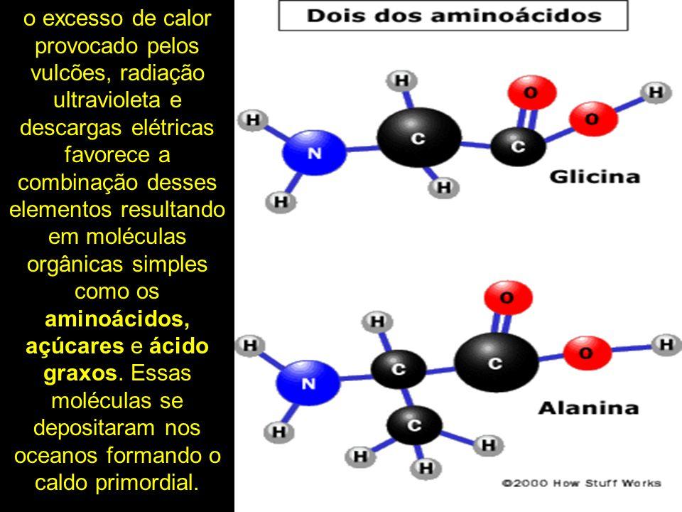 o excesso de calor provocado pelos vulcões, radiação ultravioleta e descargas elétricas favorece a combinação desses elementos resultando em moléculas orgânicas simples como os aminoácidos, açúcares e ácido graxos.