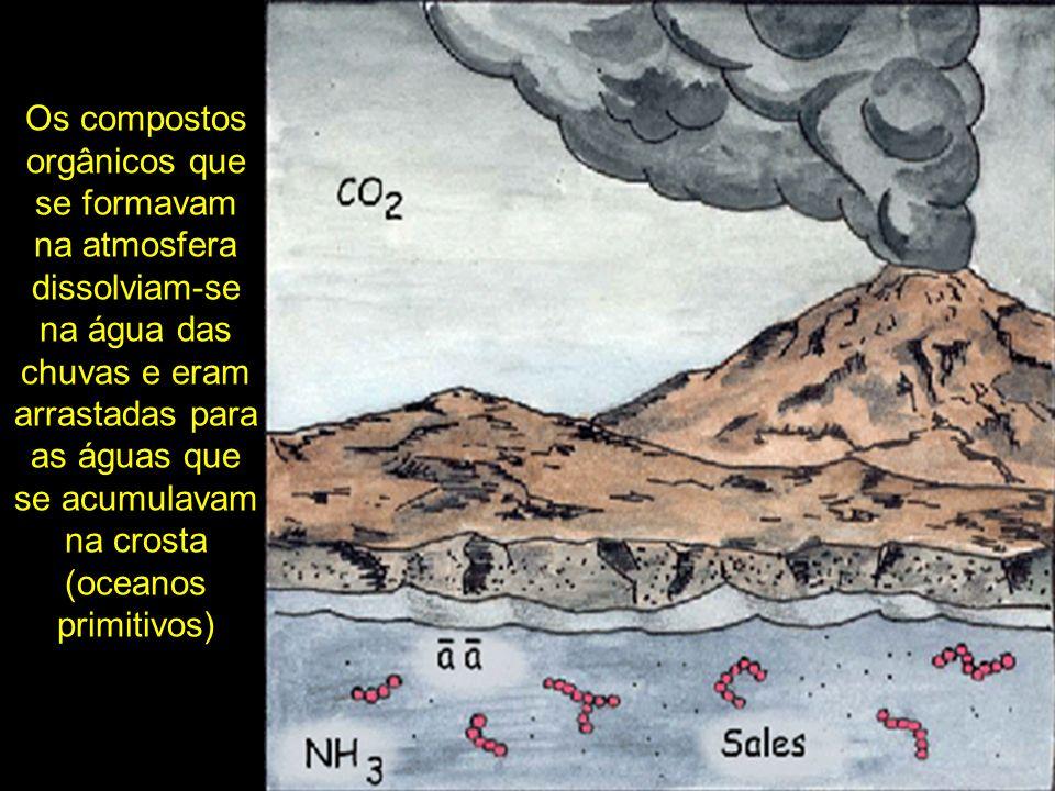 Os compostos orgânicos que se formavam na atmosfera dissolviam-se na água das chuvas e eram arrastadas para as águas que se acumulavam na crosta (oceanos primitivos)