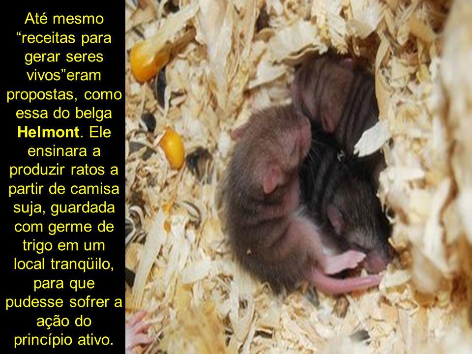 Até mesmo receitas para gerar seres vivos eram propostas, como essa do belga Helmont.