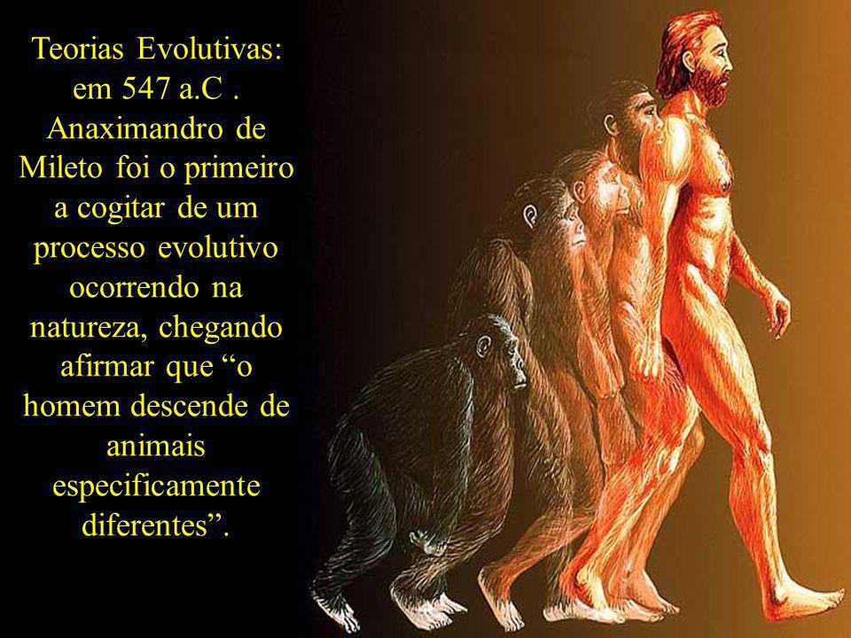 Teorias Evolutivas: